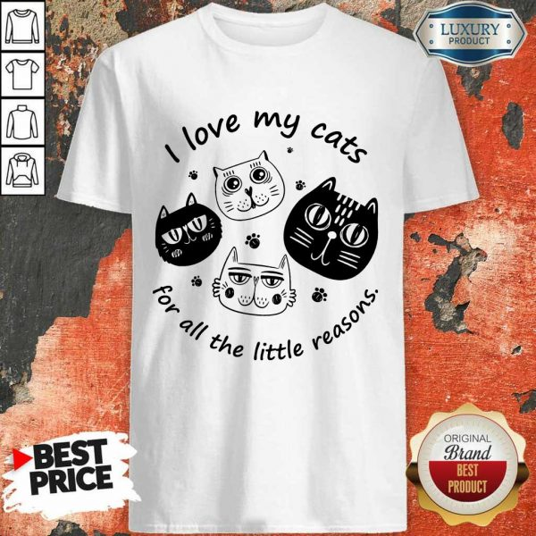 I Love My Cat For All The Little Reasons Shirt
