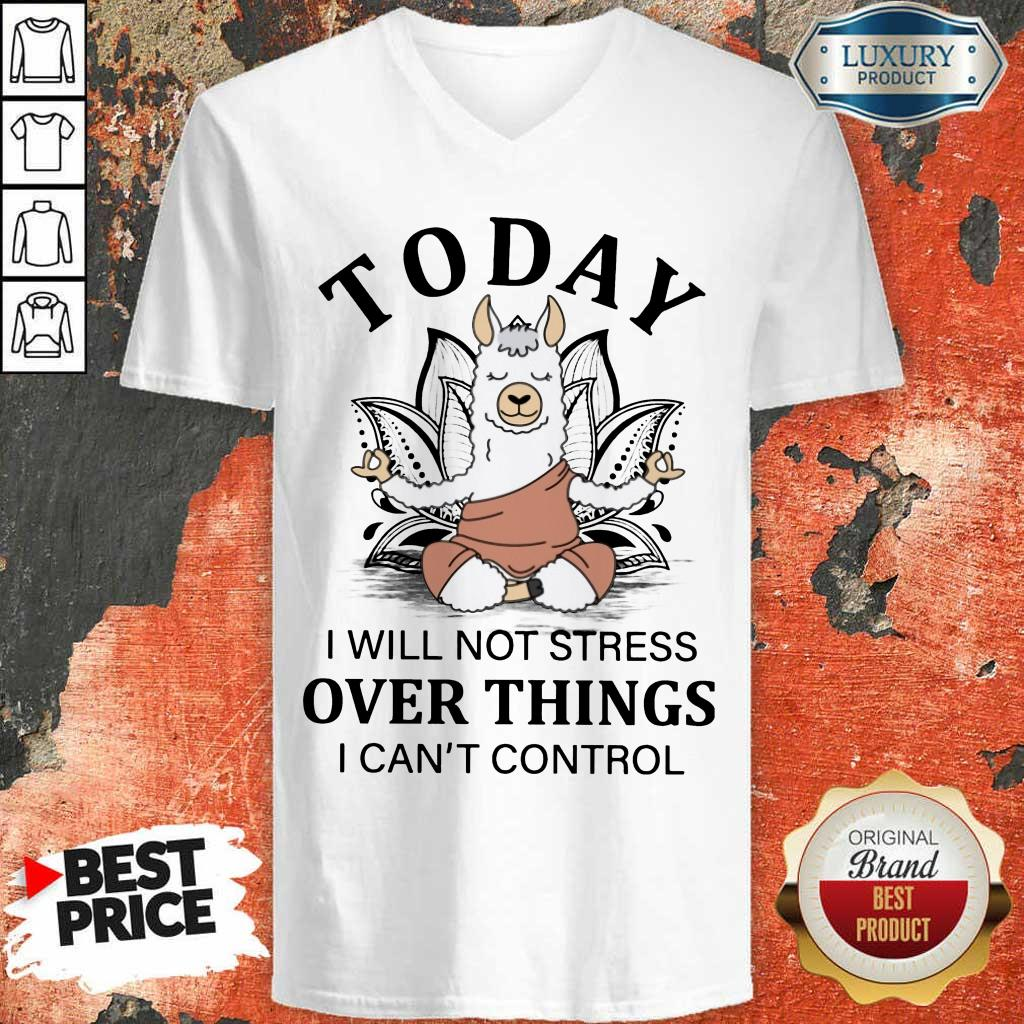 Today Over Things Llama Yoga V-Neck